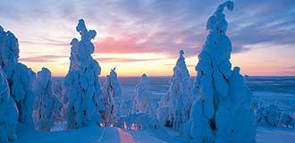 Lapônia no Inverno