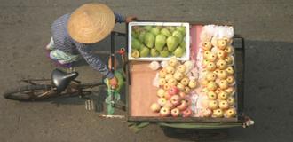Vietnã Tradicional