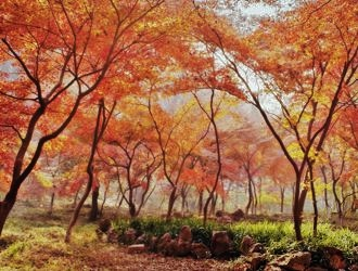 Maravilhas da China com Nanjing